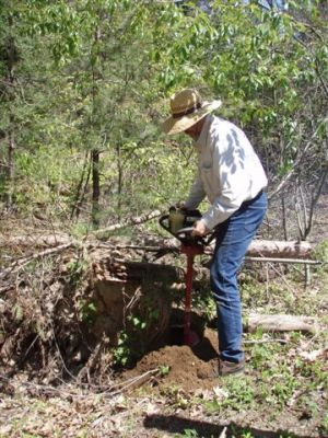 Forest Woodhenge - Bill Frey Hitting Roots