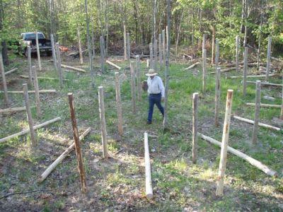 Forest Woodhenge - Bill Frey - New Posts!