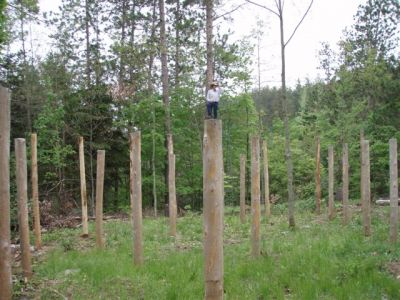 Forest Woodhenge - Bill Frey - the Overseer! 2