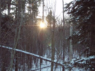 Forest Woodhenge - Winter Solstice - Sunset