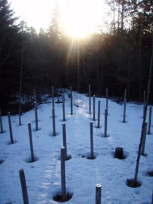 Forest Woodhenge - Spring Equinox - Sunrise - east view