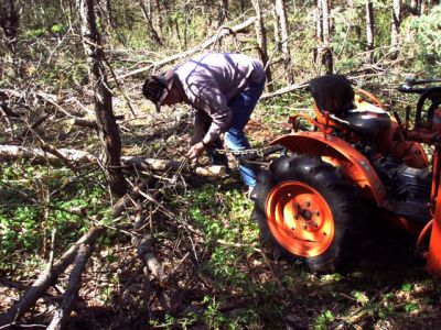 Cutting and Haulin' Trees! (6)