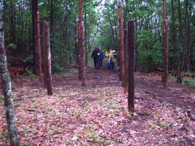Summer Solstice - Entering Woodhenge