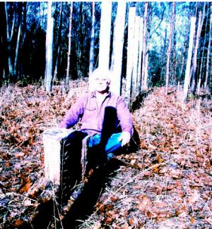 Forest Woodhenge - MidFall-True Noon - Robin